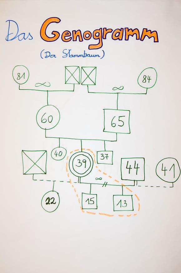 Lebensberatung - Genogramm Stammbaum